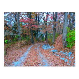 Captivating Autumn Afternoon Drive Postcard