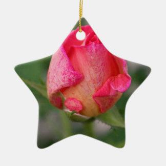 Captivation Ceramic Ornament