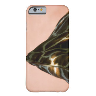 Captive animal barely there iPhone 6 case