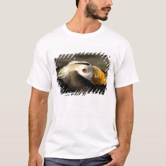 Captive Crested Puffin, Alaska Sealife Center, T-Shirt
