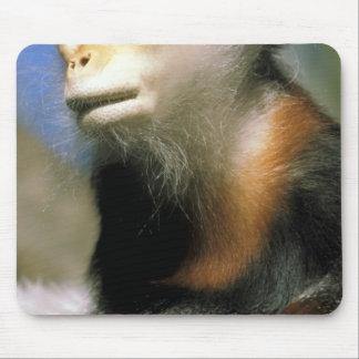 Captive douc langur, or pygathrix nemaeus mouse pad