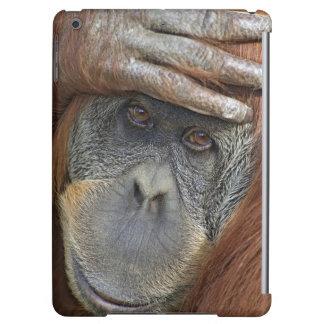 Captive female Sumatran Orangutan iPad Air Cover