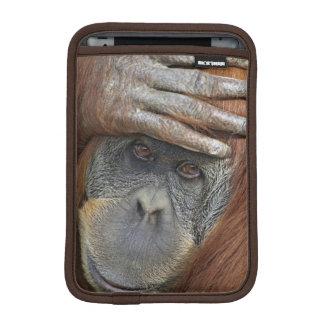 Captive female Sumatran Orangutan iPad Mini Sleeves