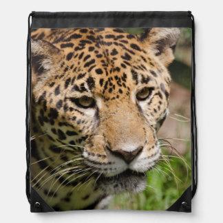 Captive jaguar in jungle enclosure 2 drawstring bag