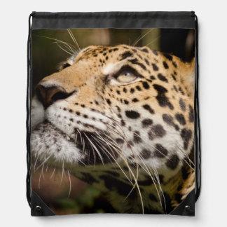 Captive jaguar in jungle enclosure 3 drawstring bag