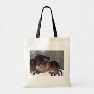 Captive Nutria at Blackwater National Wildlife Ref Bags
