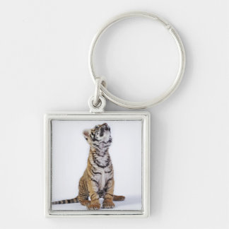 Captive, South Africa 2 Silver-Colored Square Keychain