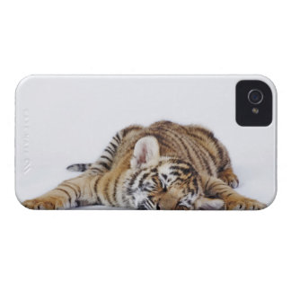 Captive, South Africa 3 iPhone 4 Case-Mate Cases