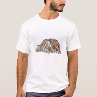 Captive, South Africa 3 T-Shirt