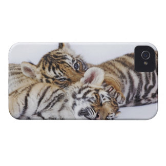 Captive, South Africa 4 iPhone 4 Case