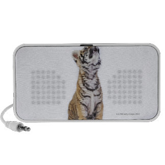 Captive, South Africa Mp3 Speakers