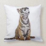 Captive, South Africa Throw Pillow