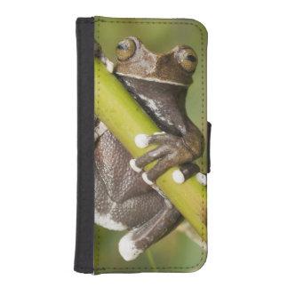 Captive Tapichalaca Tree Frog Hyloscirtus iPhone SE/5/5s Wallet