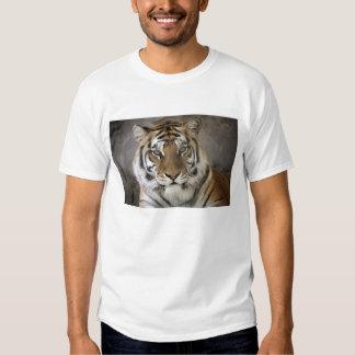 captive Tiger, Folsom City Zoo Sanctuary, T Shirt