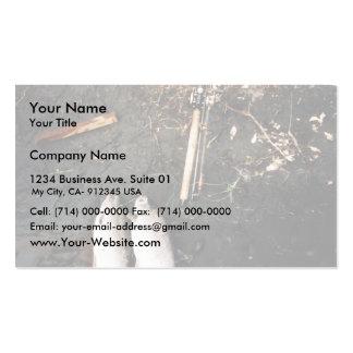 Captura de los salmones de plata o de los salmones tarjetas de visita