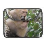 "Capuchin Monkey 13"" MacBook Sleeve Sleeve For MacBook Pro"