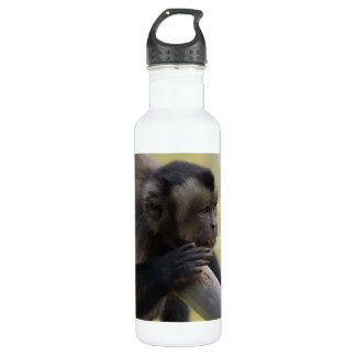 Capuchin Monkey 24oz Water Bottle