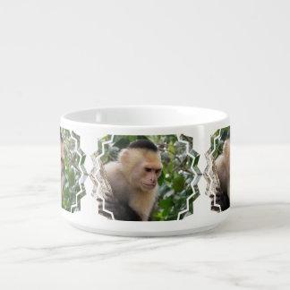 Capuchin Monkey Chili Bowl
