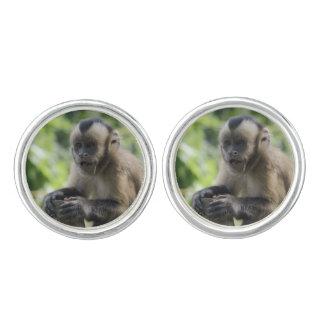 Capuchin Monkey Cufflinks