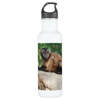 Capuchin Monkey Cute But Cranky 24oz Water Bottle