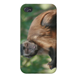 Capuchin Monkey Cute But Cranky iPhone 4 Case