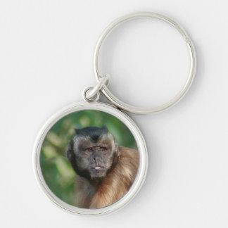 Capuchin Monkey Cute But Cranky Keychain