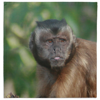 Capuchin Monkey Cute But Cranky Napkin