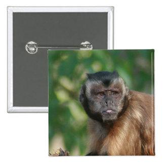 Capuchin Monkey Cute But Cranky Pinback Button