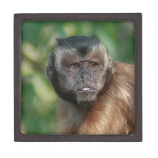 Capuchin Monkey Cute But Cranky Premium Keepsake Boxes