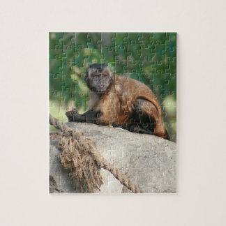 Capuchin Monkey Cute But Cranky Jigsaw Puzzle