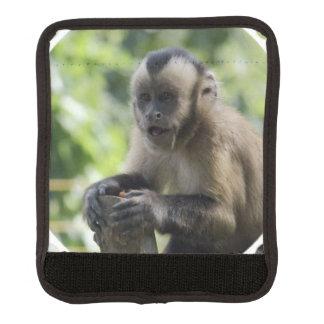 Capuchin Monkey Handle Wrap