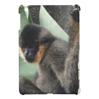 Capuchin Monkey iPad Mini Covers