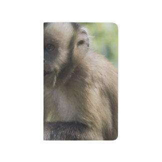 Capuchin Monkey Journals