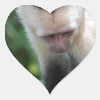 Capuchin Monkey.JPG Heart Sticker