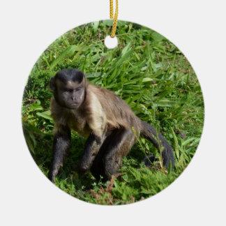 Capuchin Monkey Mugging for the Camera Ceramic Ornament