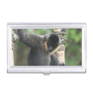 Capuchin Monkey Case For Business Cards