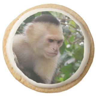 Capuchin Monkey Round Premium Shortbread Cookie