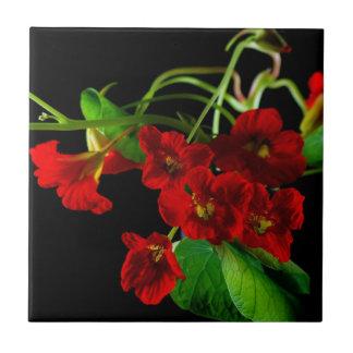Capuchina roja de rubíes azulejo ceramica
