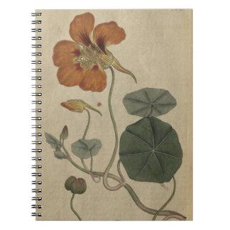 Capuchina Spiral Notebook