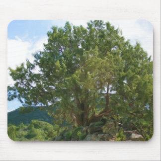 Capulin Tree Mouse Pad