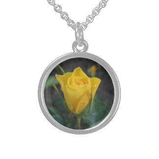 Capullo de rosa amarillo collares de plata esterlina