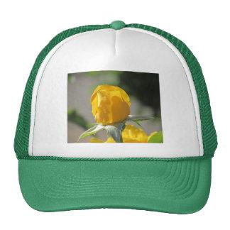 Capullo de rosa amarillo gorras de camionero