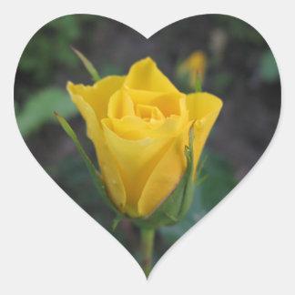 Capullo de rosa amarillo pegatina en forma de corazón