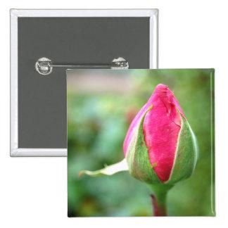 Capullo de rosa, botón cuadrado