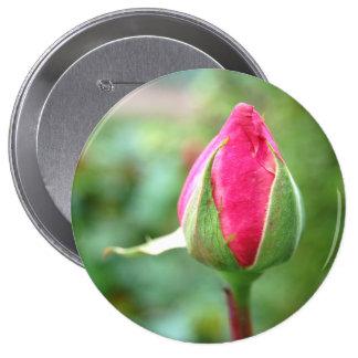 Capullo de rosa, botón enorme pin redondo de 4 pulgadas