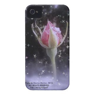 capullo de rosa estrellado el chispear en la nieve iPhone 4 Case-Mate protector