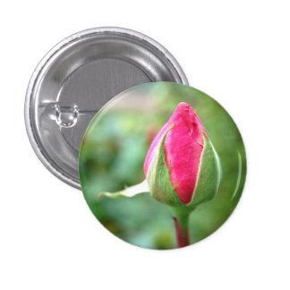 Capullo de rosa, pequeño botón pin redondo de 1 pulgada