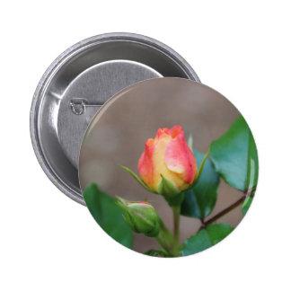 Capullo de rosa pin redondo de 2 pulgadas
