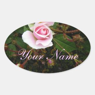 Capullo de rosa rosado pegatina ovalada
