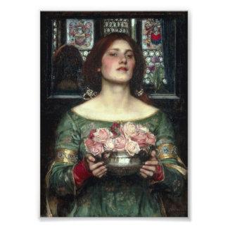 Capullos de rosa de YE del frunce Arte Fotografico